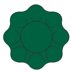 twenty-verde-scuro